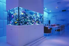 amazing built in aquariums in interior design