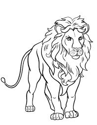 free lion coloring