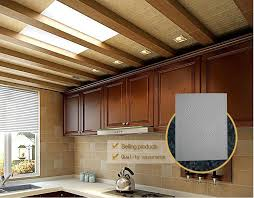 Vinyl Faced Ceiling Tile by Vinyl Faced Gypsum Board Ceiling Tiles With Aluminum Foil View