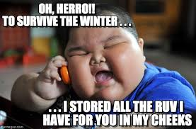 Fat Chinese Boy Meme - oh herro to survive the winter on memegen