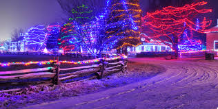 Twinkling Christmas Tree Lights Canada by Landscape Laser Lighting Lasersandlights Com Blog Page 7