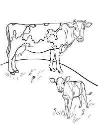 printable cow coloring page free pdf download at http