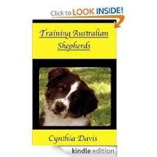 australian shepherd training tips australian shepherd smart working dog australian shepherd dog