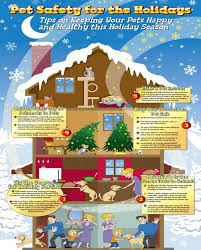 Family Pet And Garden Center - protect your animals this holiday season with affordable pet