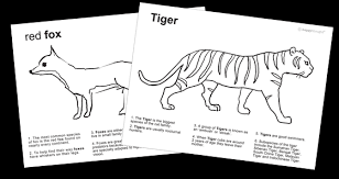 color worksheets learn color animal fact sheets