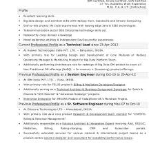 Spotfire Developer Resume Weighted Aggregate 63 2 Big Data Resume Sample 100 Analysts