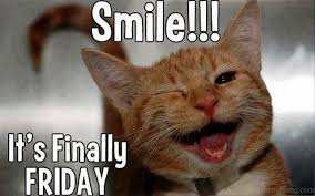 Smiling Cat Meme - smile its finally friday fit for fun fit for fun