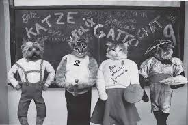 cat high the yearbook cats in school uniforms another