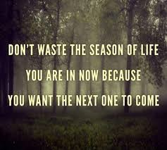 don t waste the season of you are in now because you want
