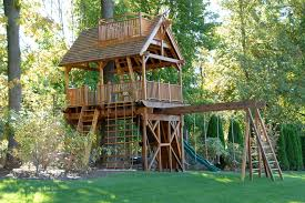 Simple Backyard Tree Houses by Backyard Treehouse Designs With Simple Design And Kids Playing