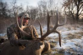 Ohio Public Hunting Land Maps by Ohio Hunting Land For Sale Whitetail Properties