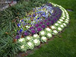 landscape flower beds and stone border edging installing in