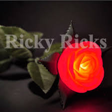 12 led flowers roses valentines pink plastic light up