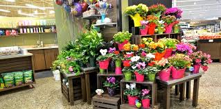 flowers store jsi store fixtures