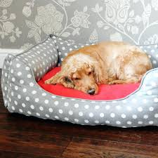 memory foam dog beds uk u2013 restate co