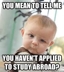 Study Memes - our favourite study abroad memes australia studies centre