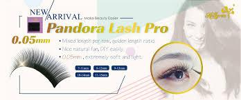 Eyelash Extensions Fort Worth False Eyelashes Eyelash Extensions Qingdao Hollyren Cosmetics Co