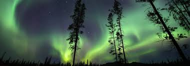 Yukon Lights Festival Northern Lights In Whitehorse Yukon Lodge And Spa Look Amazing