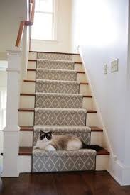 taza from tuftex carpets of california on the stairs very pretty