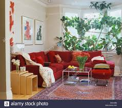 Tall Couch by Large Red L Shaped Sofa And Tall Green Houseplant In Modern White