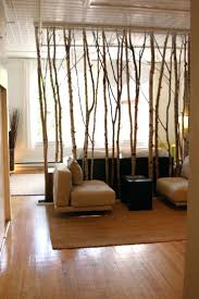book shelf room divider tree branch do this instead of wall for
