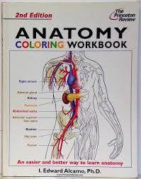 anatomy coloring book edition 5th the anatomy coloring book