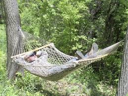 attractive hanging hammock between two trees tree hanging hammock