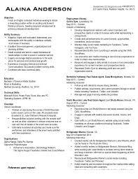 Resume Writers Houston Panofsky Renaissance Six Essays Help With My Scholarship Essay On