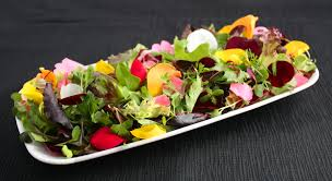 edible flower garnish tender petals for food decoration and gourmet recipes