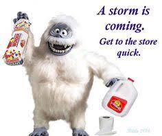 Winter Storm Meme - snow storm memes snow storm memes straight up pinterest memes