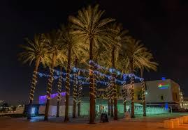 palm tree christmas tree lights ta s downtown on ice matthew paulson photography
