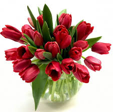 how to make choice for flower bouquets for different occasion of