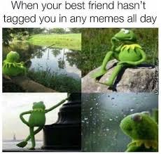 Funny Kermit Memes - kermit the frog memes best collection of funny kermit the frog
