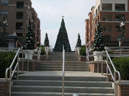 branson landing trees i miss going to branson right