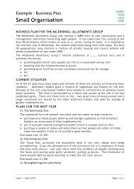 How To Build A Business Plan Template Consultant Business Plan Template Manufacturing Consultant