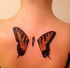half betrayed butterflies with punctured wings paramore