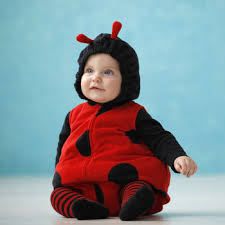 ladybug costume the search for a baby ladybug costume