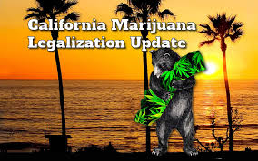 Legalize Weed Meme - california marijuana legalization support at record level in march