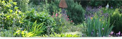herbal garden garden herbal garden in delhi samadhiya landscaping
