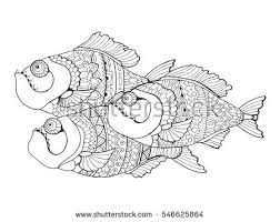 piranha fish coloring book adults vector stock vector 551861854