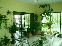 Green Living Rooms by Image Wonderful Natural Green Living Room With Indoor Plants