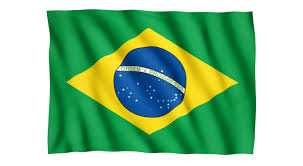 Cool Brazil Flag Real Jobs At The Olympics Nicole Sports Writer Dk Find Out