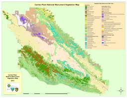 list of california native plants vegetation california native plant society
