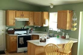 oak cabinet kitchen ideas light oak cabinets propertify co