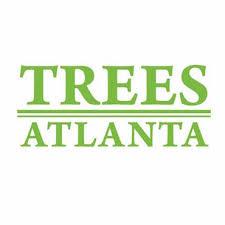registry trees atlanta