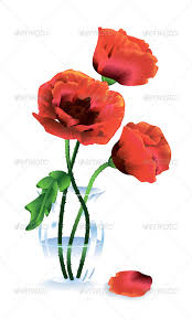 poppies flowers silk flowers poppies by kostins graphicriver