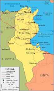 tunisia physical map tunisia map and satellite image