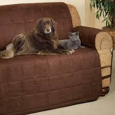 Bottom Of Chair Protectors by Ultimate Pet Furniture Protectors With Straps