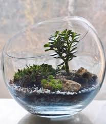 make your miniature garden in a glass bowl ideas for glass