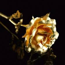 Gold Rose Best 25 Golden Roses Ideas On Pinterest Bead Loom Patterns
